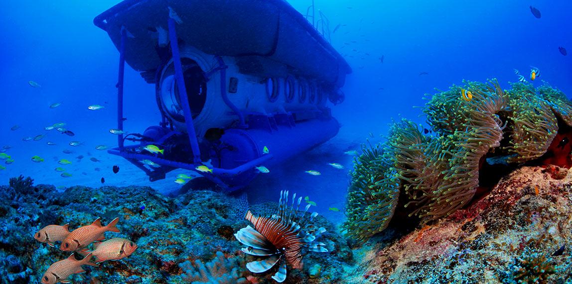 Submarine Underwater Trip