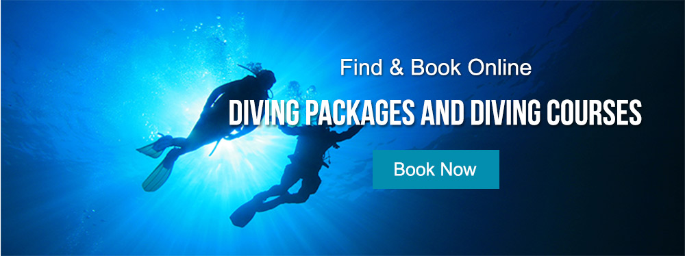 Diving Packages & Diving Courses in Mauritius