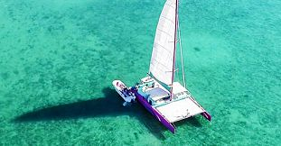 Harris Wilson Catamaran Cruise - South East Coast