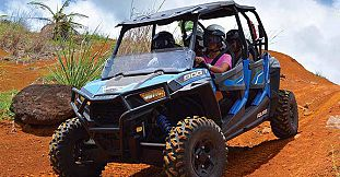 Adult Buggy & Quad (Fun Drive Adventure)