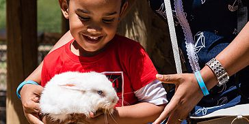 Kids Animal Adventure Package at Casela