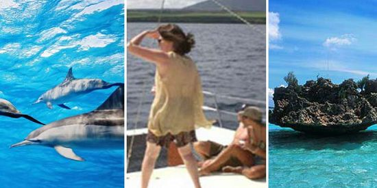 Catamaran Cruise - See Dolphins + Visit Benitiers Island + Lunch