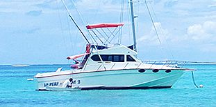 Deep Sea Fishing At Grand Bay - 40ft Boat - Half Day - Promotion