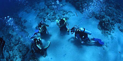 PADI Discovery Initiation diving in mauritius (7)