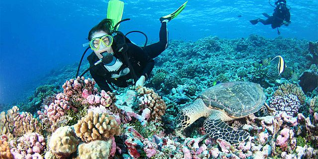 Diving in grand bay mauritius Forfaits de plongee maurice (9)