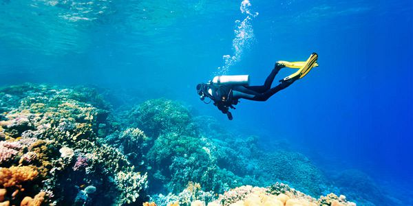 Diving sessions in the northern coast of mauritius pereybere (5)