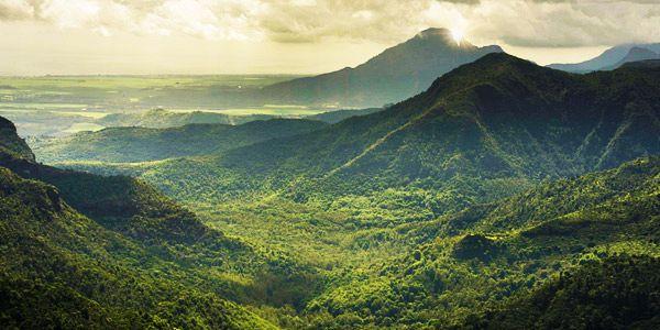 Image result for Black River Gorges