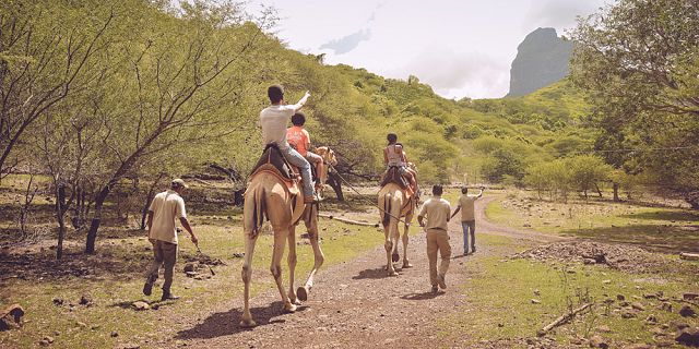 Camel ride activities  (3)