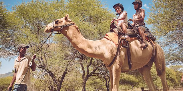 Camel ride activities  (5)