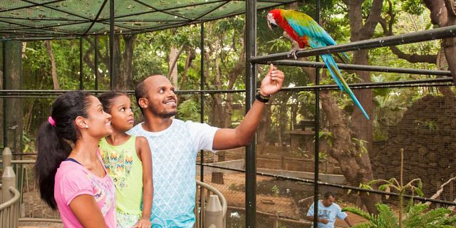 Kids animal adventure at casela (1)