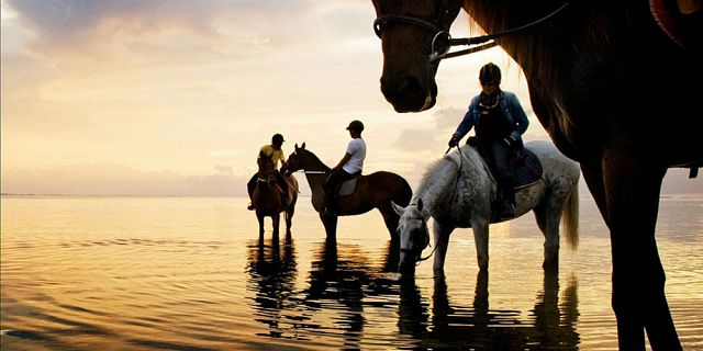secluded horse riding on the riambel beach (1)