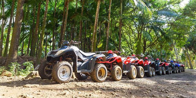 Full day quad bike discovery tour in the south (5)