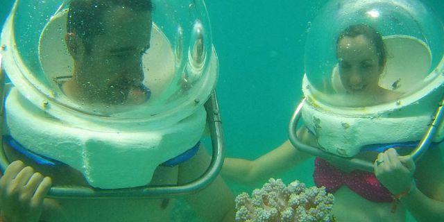 essay life under sea