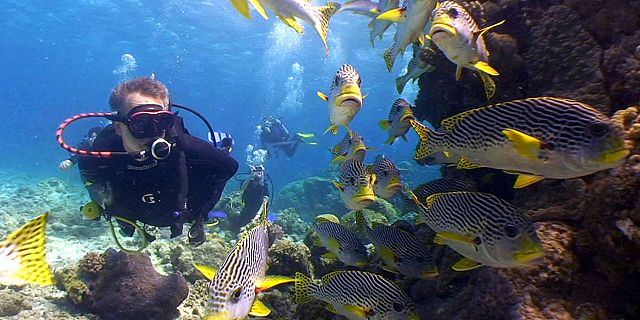 PADI open water advanced diving course mauritius (3)
