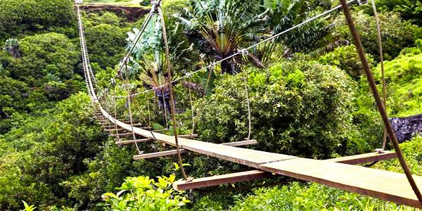 350m nepalese bridge 500m zip line adventure (1)