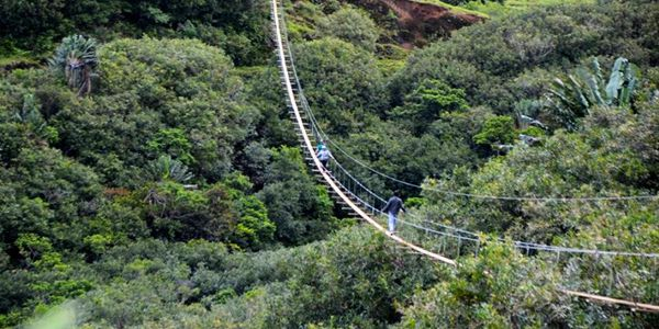 350m nepalese bridge 500m zip line adventure (3)