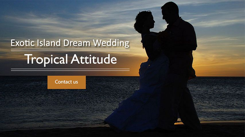 Wedding at Tropical Attitude