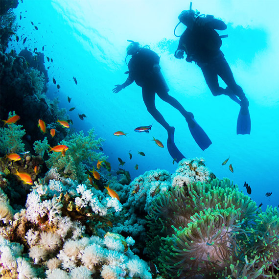 Dive into Happiness! - Scuba Diving in Mauritius