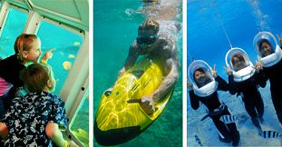 Mauritius Marine Discovery Package