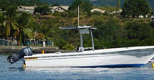 Private Half Day Budget Fishing Trip- West Coast of Mauritius