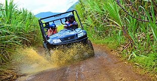 Quad Ride In Nature At The East Coast (Etoile Reserve)