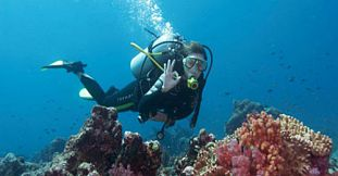 Padi Advanced Open Water Diver Course - Tamarin