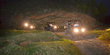 Buggy by Night Trip