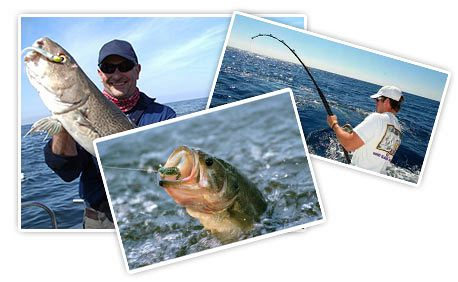Fishing Trips Available in Mauritius