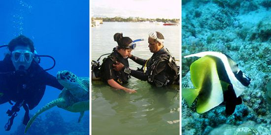 Padi Discover Diving - Initiation Dives - Grand Bay