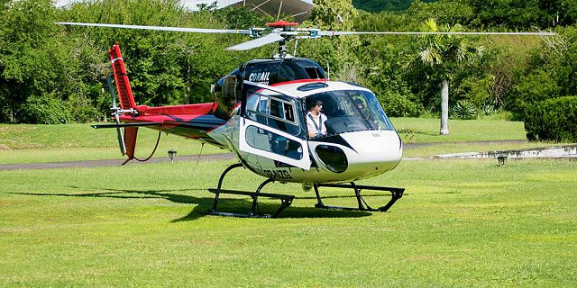Group helicopter airport transfer (3)