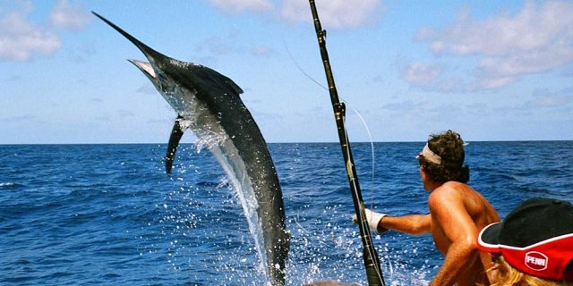 Half day fishing trip west coast of mauritius (2)