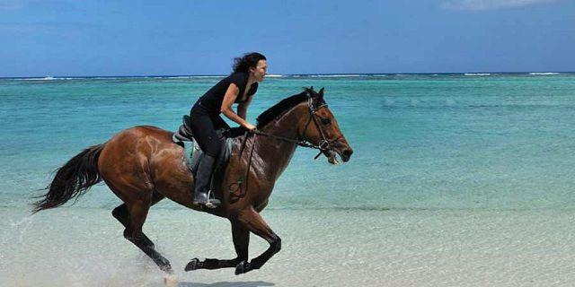 Morne Horse Beach Ride Mauritius 4