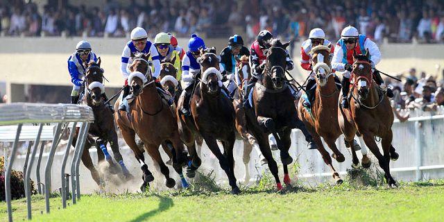 horse-racing-in-mauritius%20(2).jpg