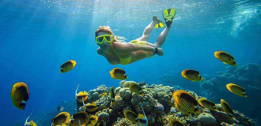 Best Places To Stay In Mauritius Where To Stay In Mauritius - 6 amazing underwater attractions